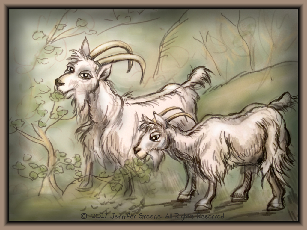 Goats01